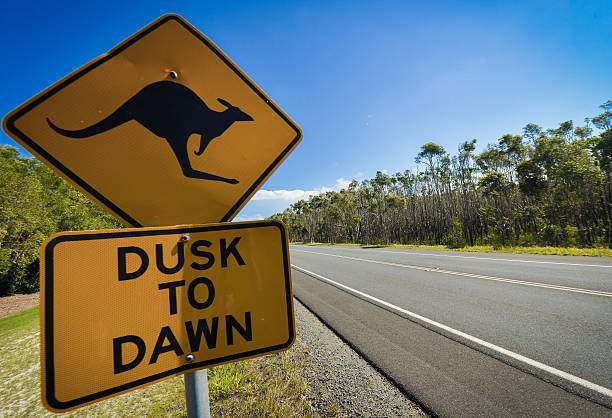 Kangaroo road sign next to a highway, Australia stock photo