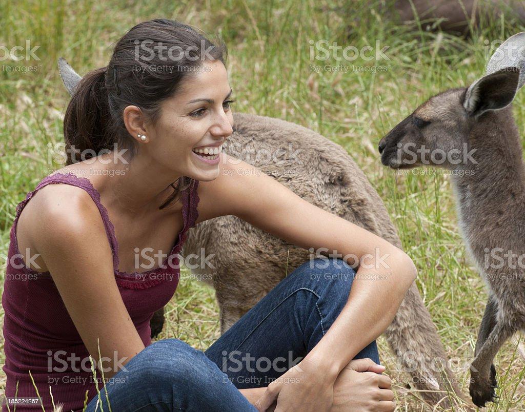 Kangaroo Wildlife Experience, Australia (XXXL) stock photo