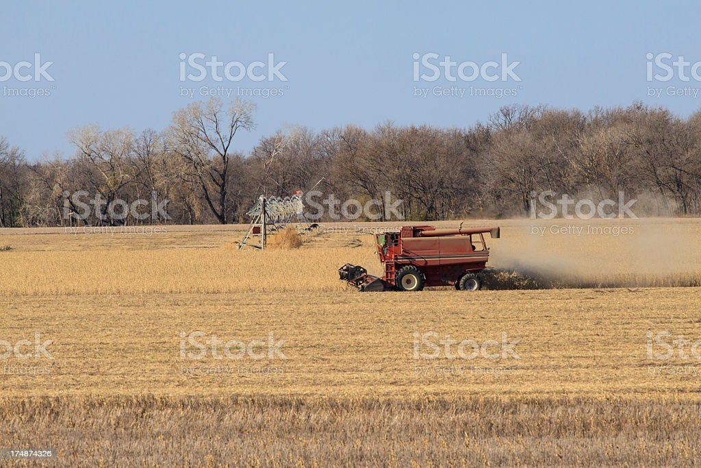 Kansas Harvest royalty-free stock photo