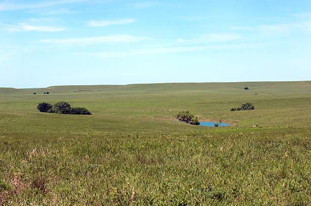 Kansas Prairie Landscape stock photo