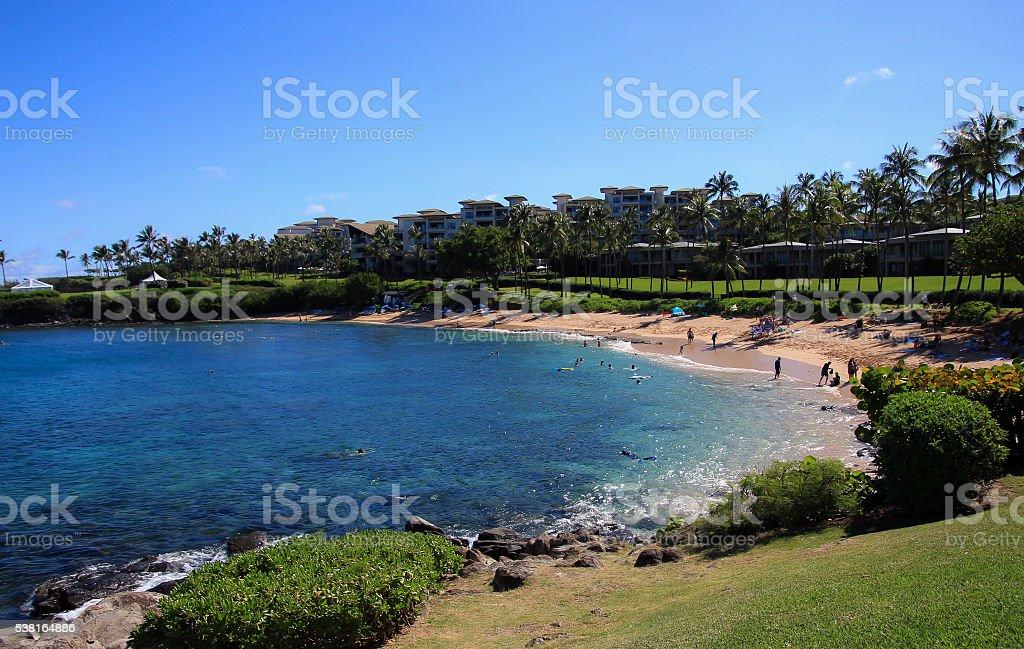 Kapalua Beach stock photo
