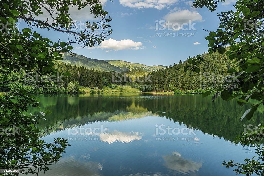 Karagol (Black Lake), Artvin stock photo