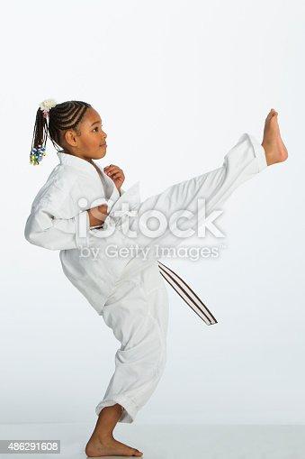 istock Karate Kick! 486291608