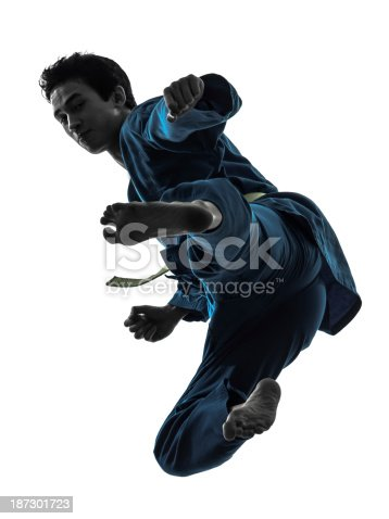 one asian young man exercising martial arts karate vietvodao in silhouette studio on white background