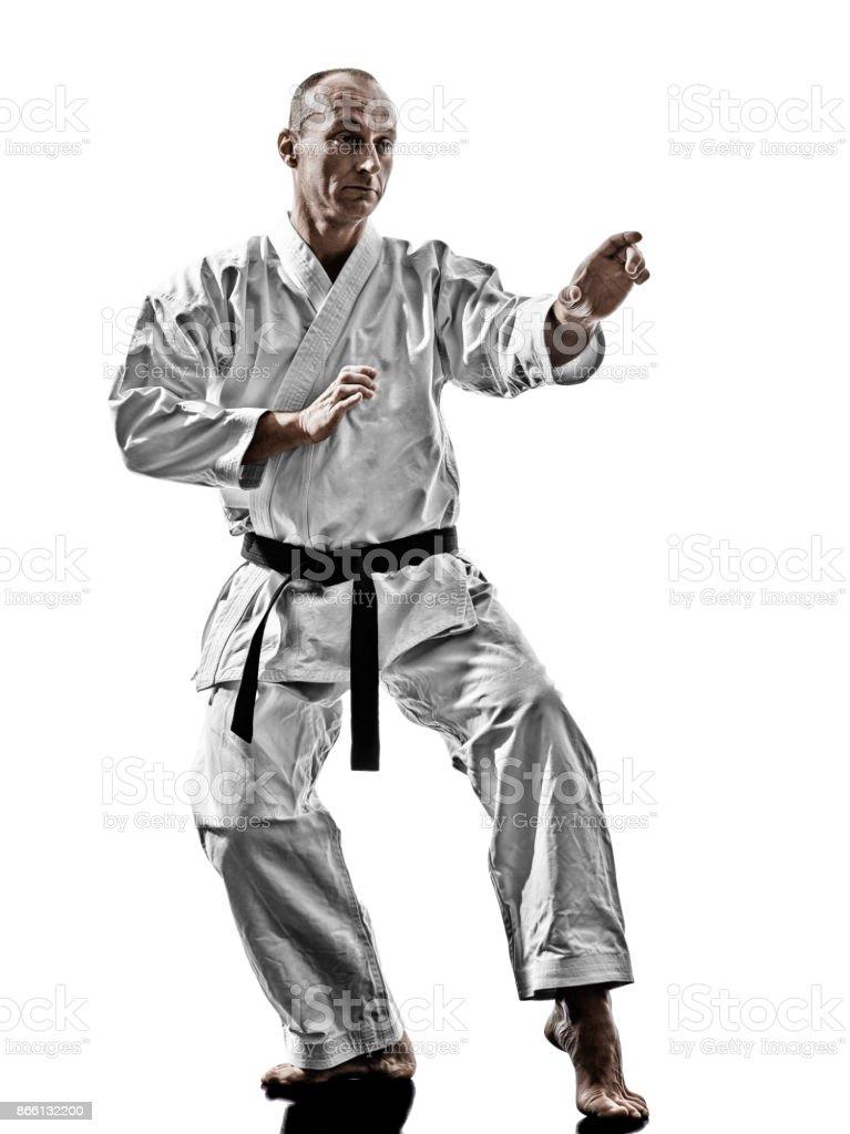 karate man training isolated stock photo