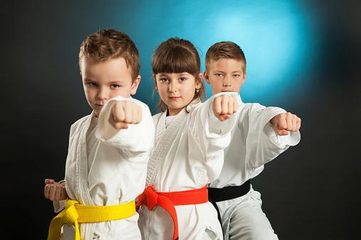 istock Karate 536950149