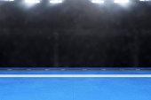 Karate tournament arena