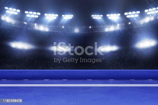 istock Karate tournament arena, sport concept 1182458428