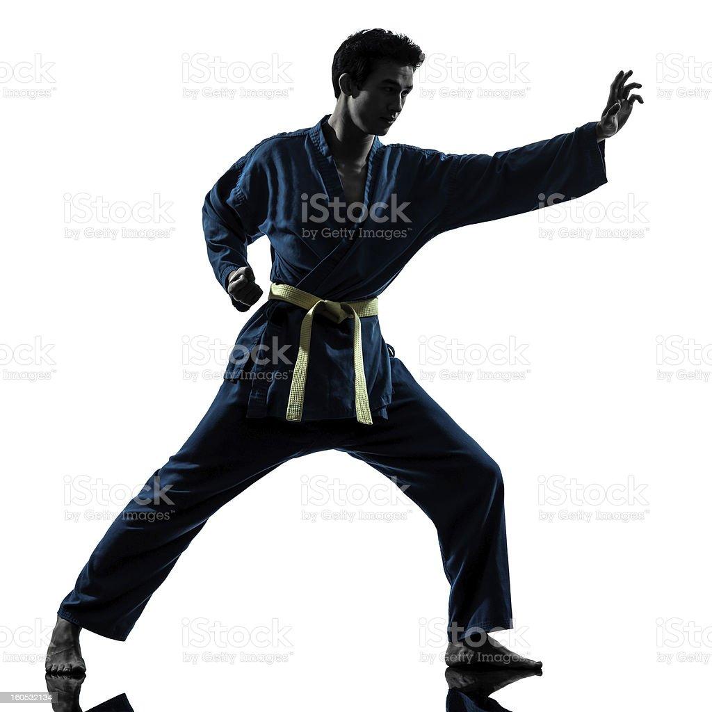 karate vietvodao martial arts man silhouette royalty-free stock photo