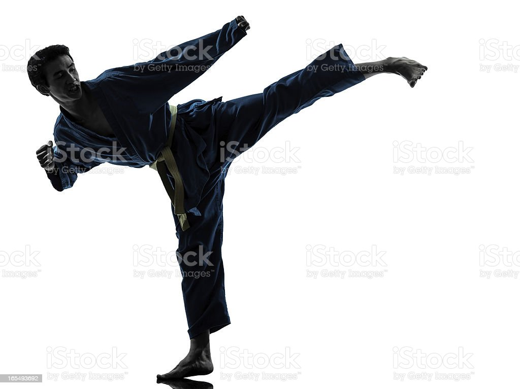 karate vietvodao martial arts man silhouette stock photo