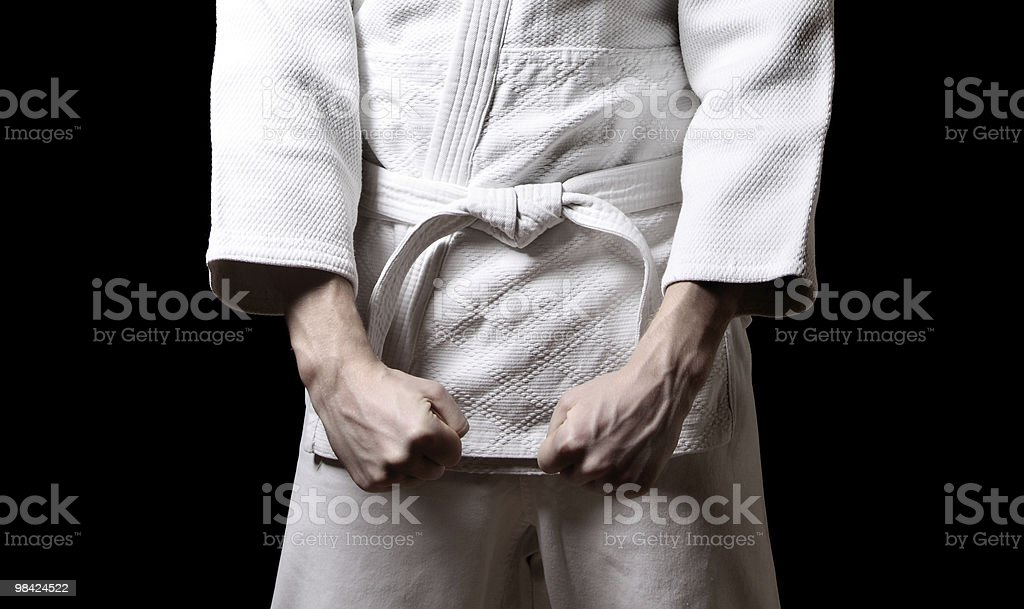 Karateka royalty-free stock photo