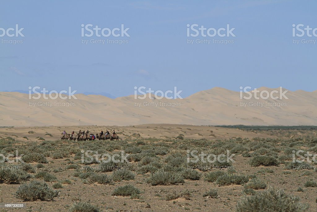 Karawane in der Wüste royalty-free stock photo