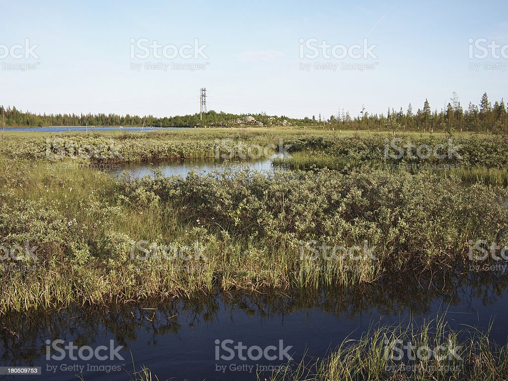 Karelian landscape royalty-free stock photo
