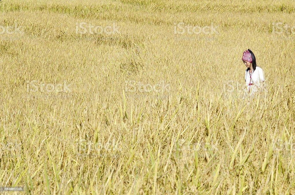 Karen Hill Tribe Girl stock photo