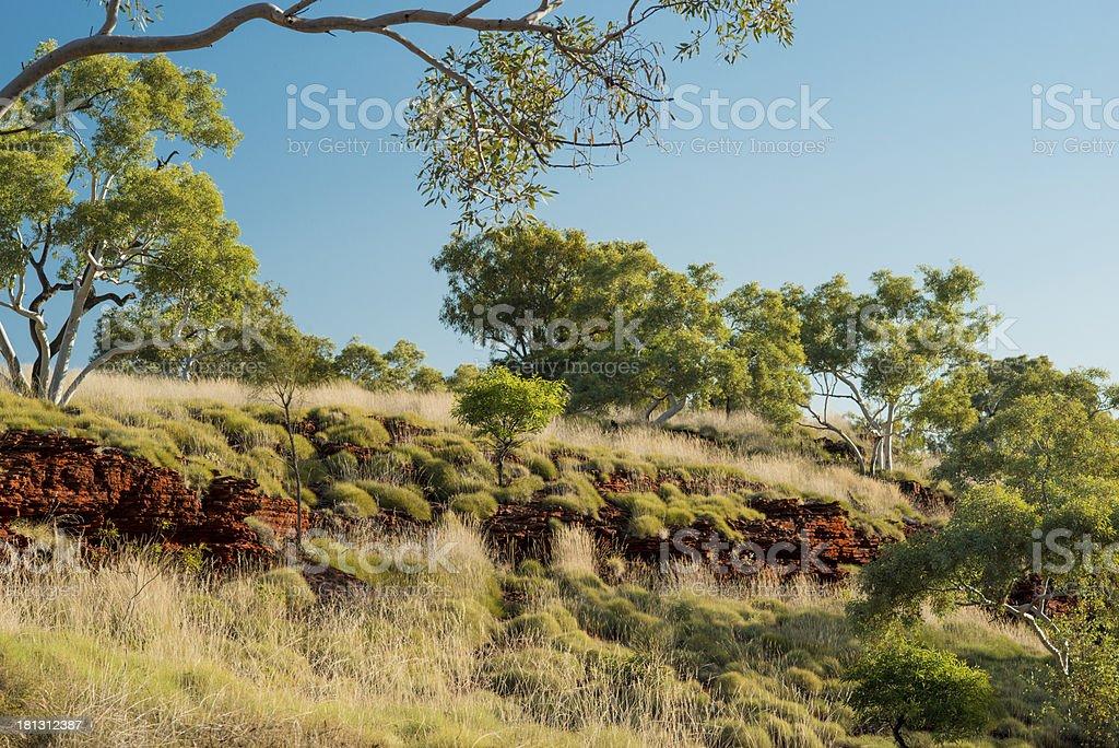 Karijini Hamersley Range landscape snappy gums spinifex royalty-free stock photo