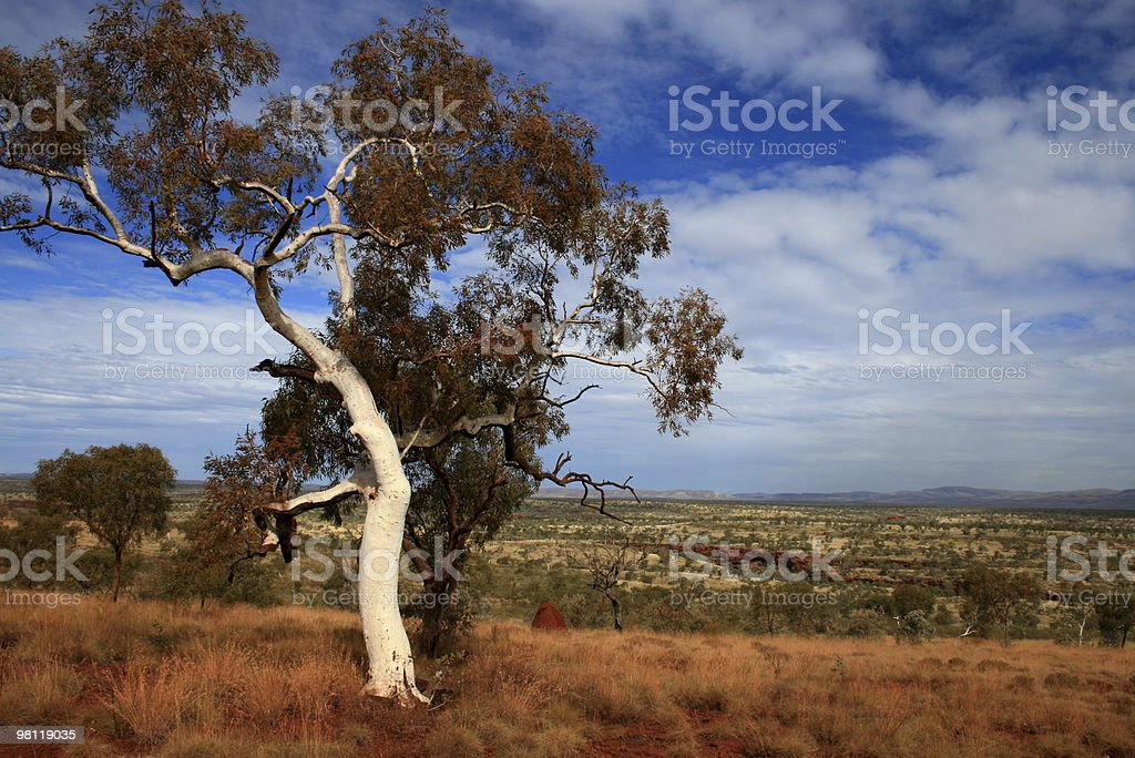 Karijini Park, Pilbara, Australia royalty-free stock photo