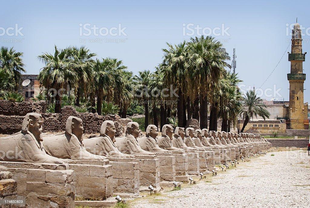 Karnak Temple , Avenue of  headed Sphynxes royalty-free stock photo