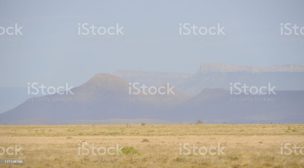 Karoo landscape royalty-free stock photo