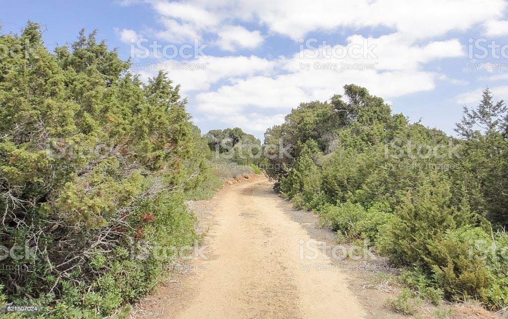 Karpasia wild nature. Karpass peninsula of Northern Cyprus photo libre de droits