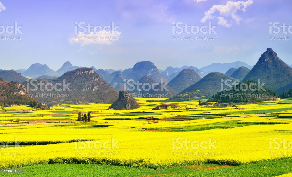 Karst landscape and rape flowers stock photo