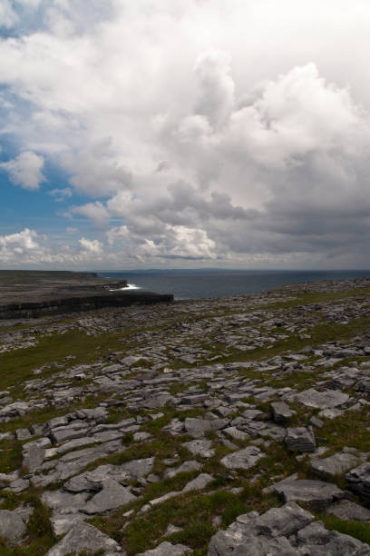 Karst Landscape with Cliffs West from Dun Aonghasa A dramatic landscape, the view west from Dun Aonghasa.  The karst formation and cliffs of Inishmore under the clouds of a gathering spring storm.  Inishmore, Aran Islands, County Galway, Ireland. michael stephen wills aran stock pictures, royalty-free photos & images