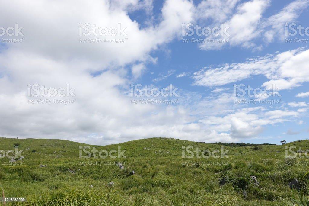 山口県秋吉台高原カルスト地形。 ストックフォト