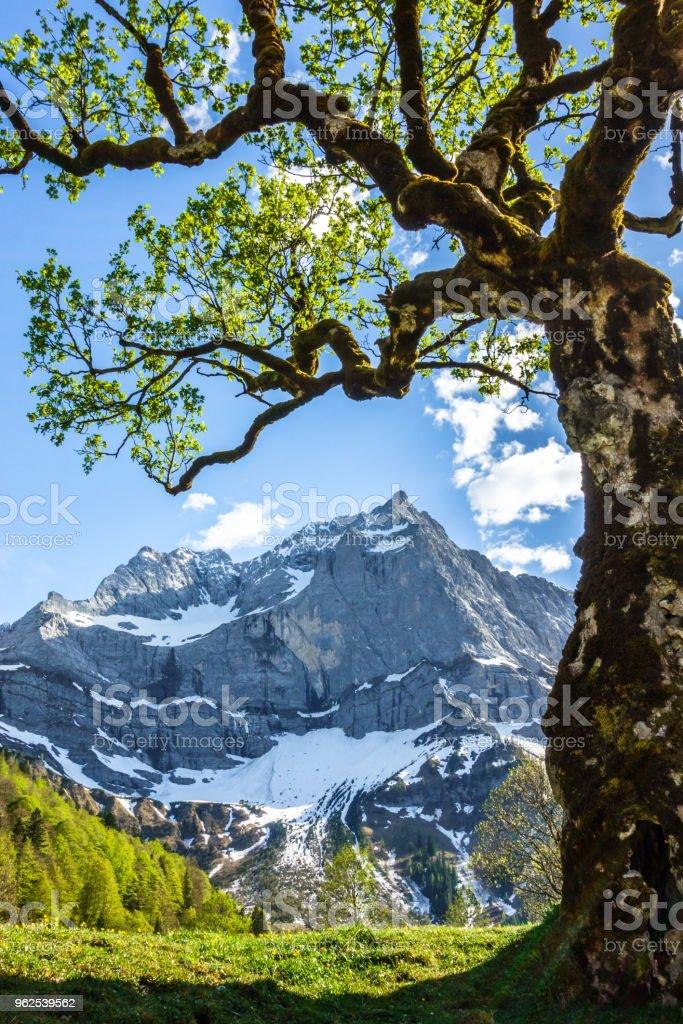 Montes karwendel - Foto de stock de Alemanha royalty-free