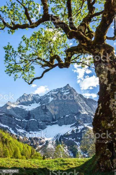 Foto de Montanhas Karwendel e mais fotos de stock de Alemanha