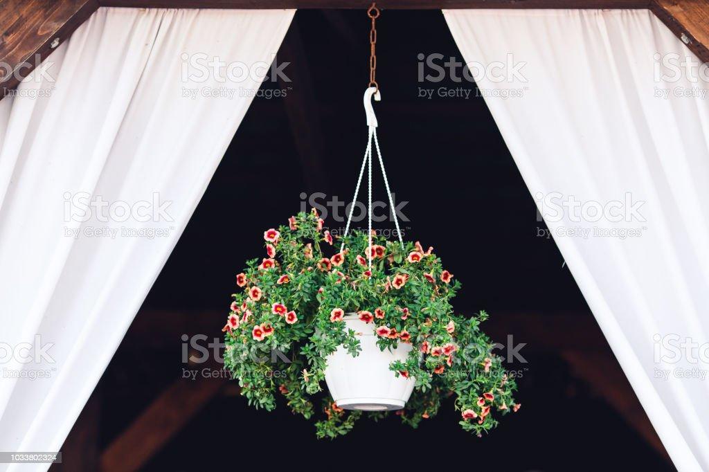 Kashpo with flowers hanging in gazebo window