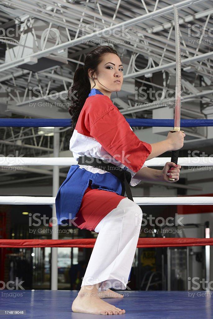 Katana Fight royalty-free stock photo