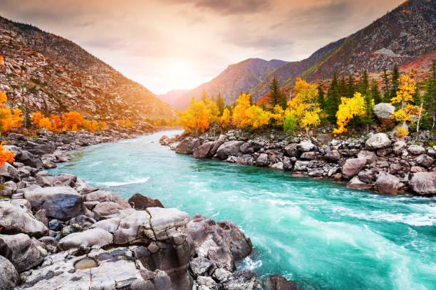 katun river in autumn mountains at sunset. altai, siberia, russia - państwowy rezerwat przyrody altay zdjęcia i obrazy z banku zdjęć