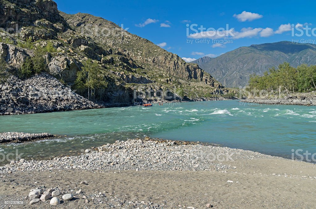 Katun River in the middle reaches. Altai,  Russia. stock photo
