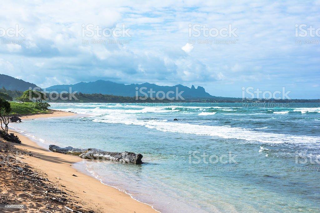 Kauai beach, Hawaii stock photo