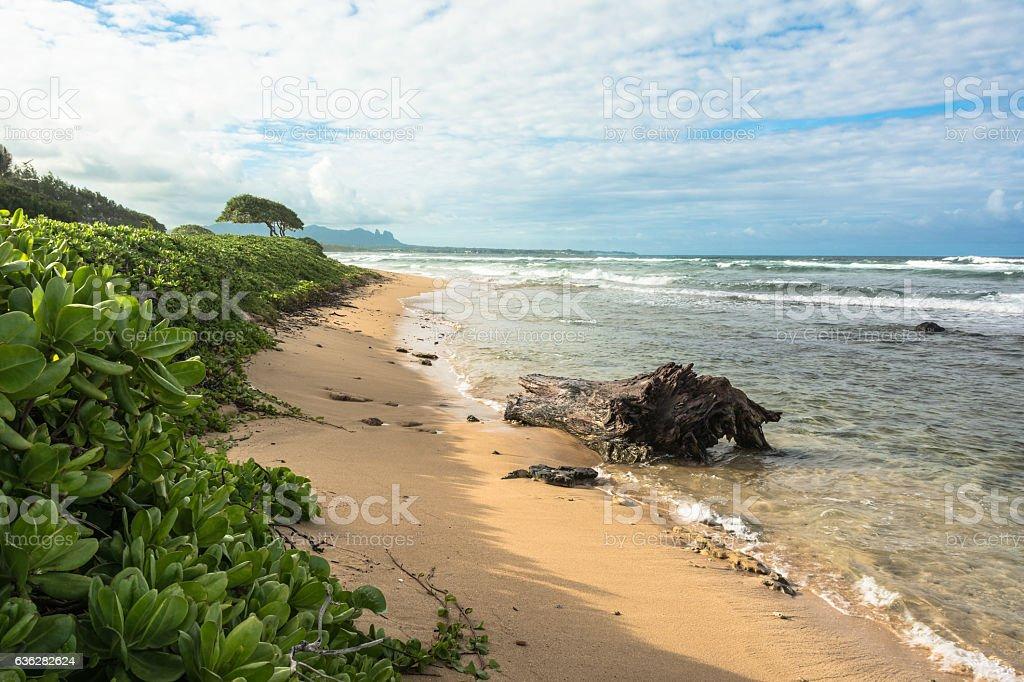 Kauai coast, Hawaii stock photo