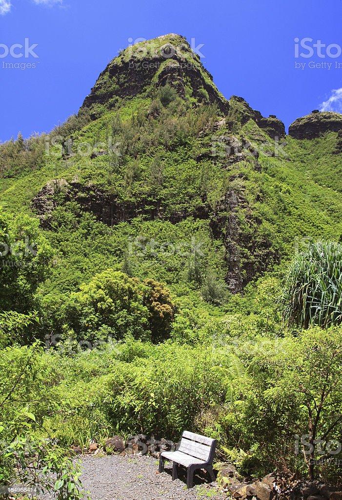 Kauai Hawaii mountain botanical garden bench scenic stock photo