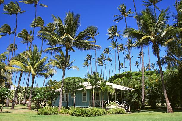 kauai hawaii  resort cottage and palm trees - hawaii home stock photos and pictures