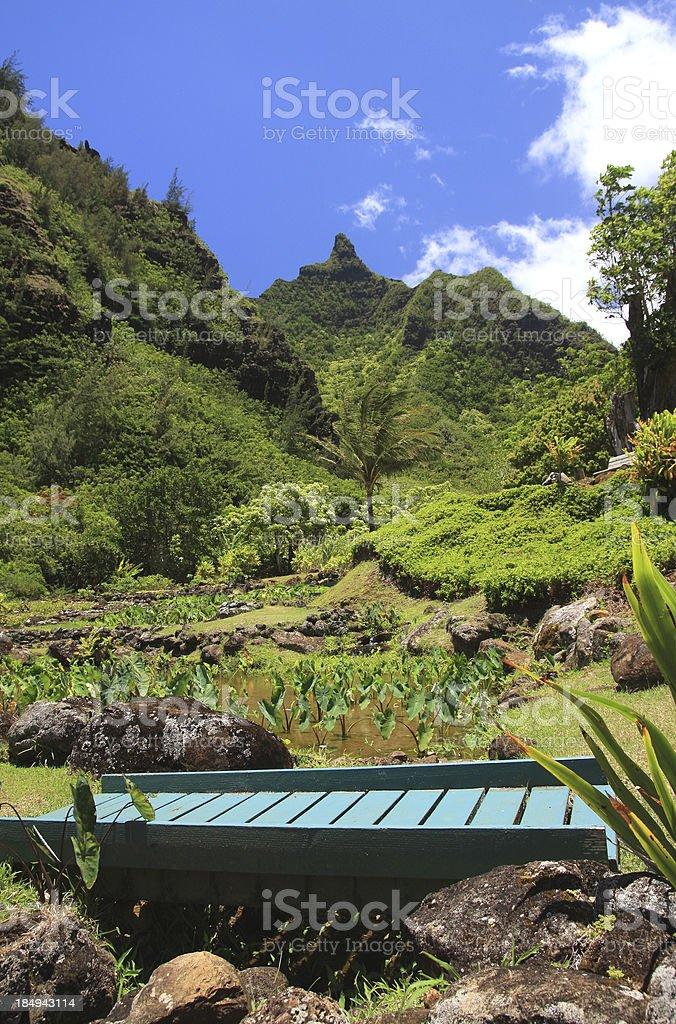 Kauai Hawaii tropical style mountain bridge scenic stock photo