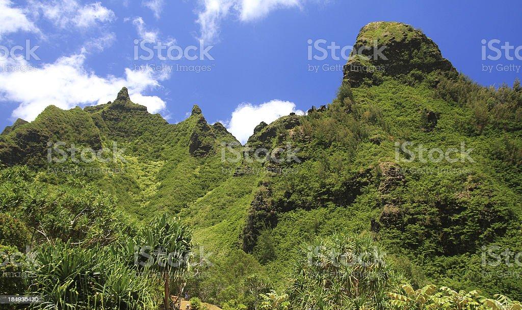 Kauai Hawaii tropical style mountain scenic stock photo