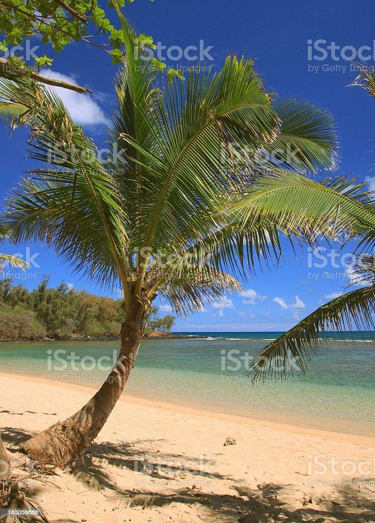 Kauai Hawaii turquoise sea beach tropical style scenic stock photo