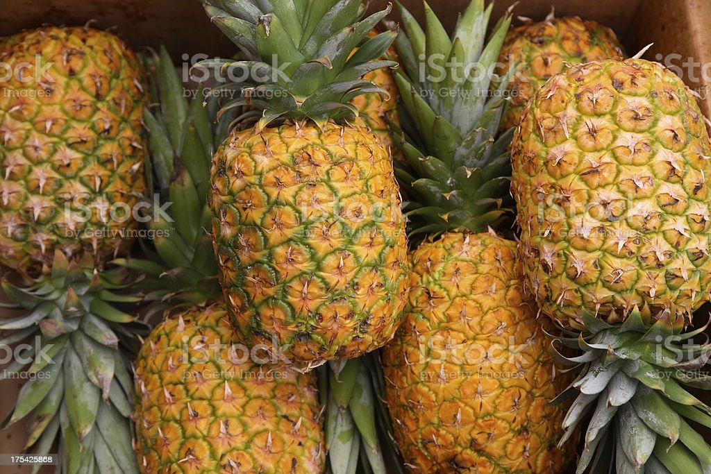 Kauai: Pineapple royalty-free stock photo