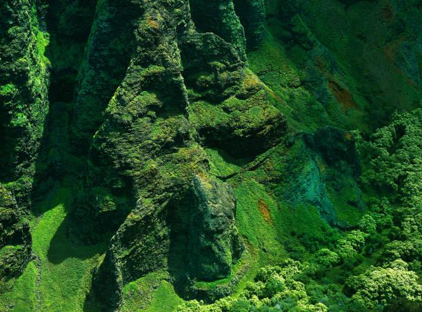 Kauai Ravine 2 stock photo