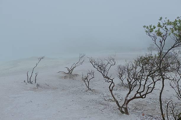 kawah putih lago crater bandung-blanco - kawah putih fotografías e imágenes de stock
