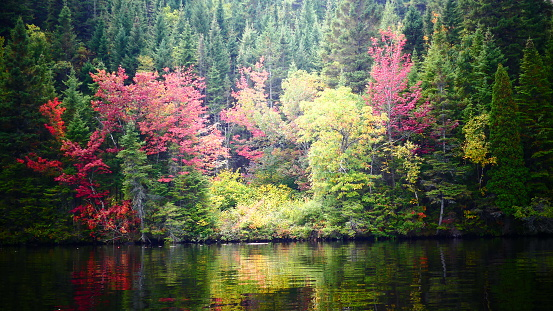 Kayac, Autumn