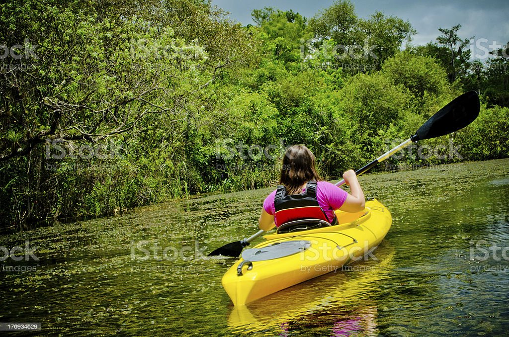 Kayak in the Everglades stock photo
