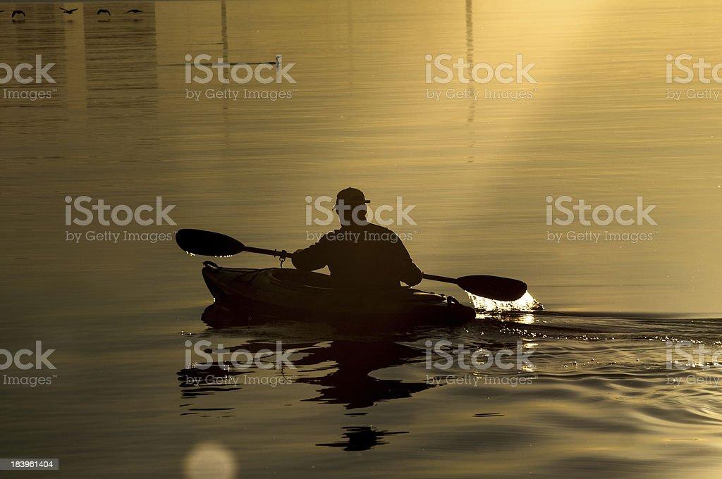 kayak on the lake tree royalty-free stock photo
