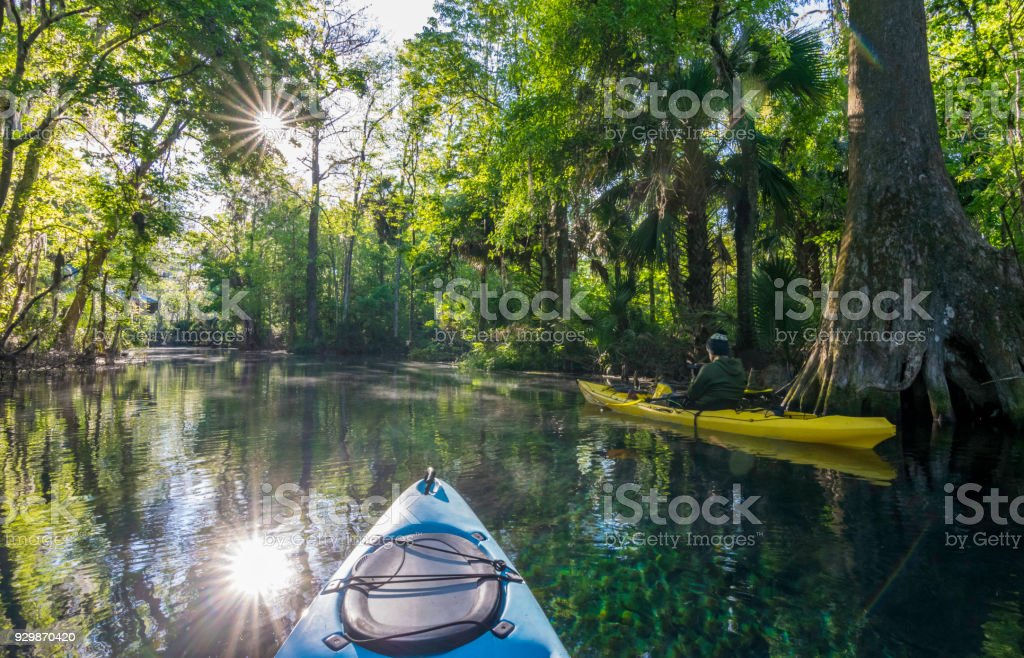 Kayaker Photographing at Dawn on the Silver River stock photo