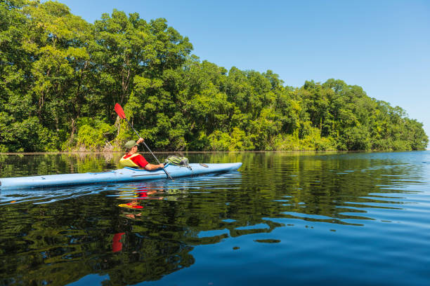 Kayaking in the Cacao Lagoon stock photo