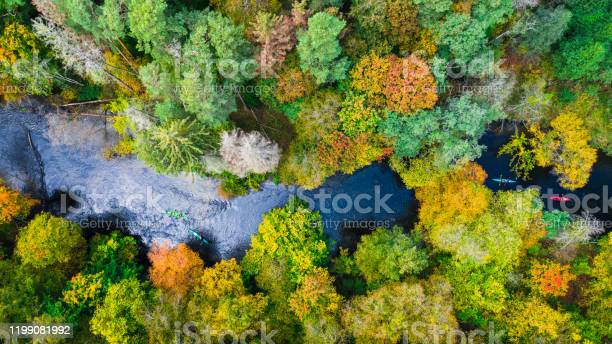 Photo of Kayaking on autumn river in forest, view from above