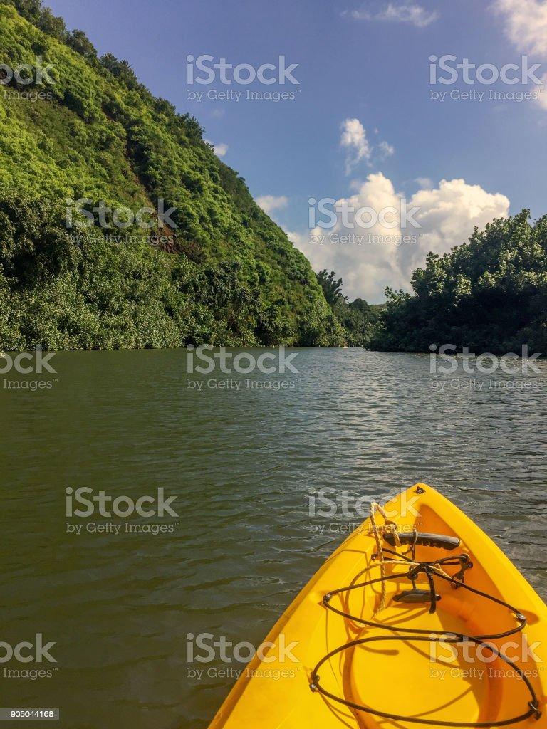 Kayaking on Wailua River, Kauai, Hawaii stock photo