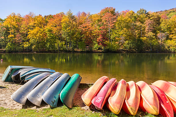 Kayaks, Canoes and Row Boats on Little Pond Kayaks, canoes and row boats lined up on the shore of Little Pond state campground in the Catskills Mountains of New York. catskill mountains stock pictures, royalty-free photos & images
